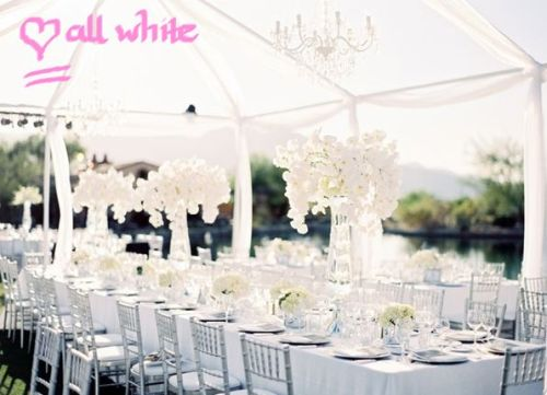 Marquee Ideas Weddings White Interiors