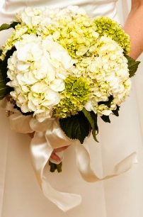 Flower Ideas Wedding Hydrangea White