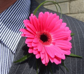Buttonholes Ideas 2012