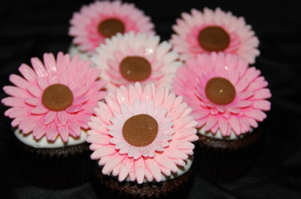 Gerbera Cupcake Ideas