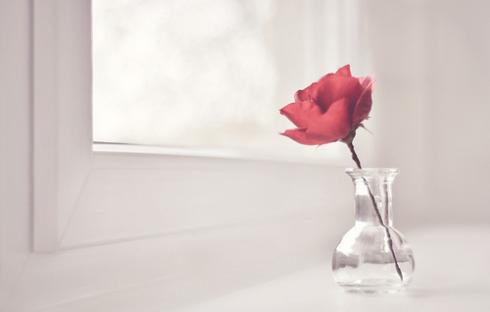 Wedding Decor Ideas Roses Table