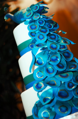 Amazing wedding cake ideas peacock theme