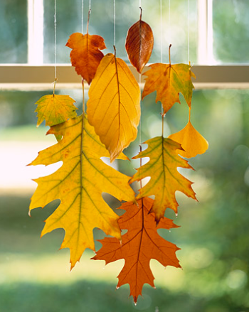 Fall Wedding Decoration Ideas Leaves